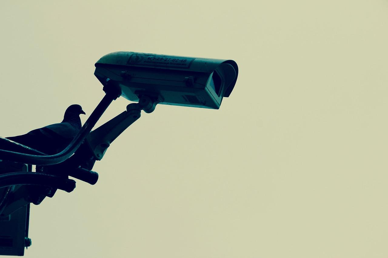 Télésurveillance : une protection périmétrique indispensable